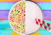 Milk-Shake Froot Loops BK capa