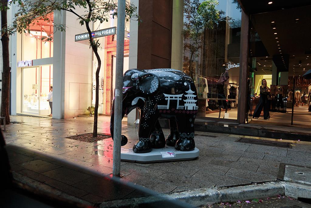 Elefante Rua Oscar Freire São Paulo
