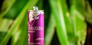 Red Bull Summer Edition Açaí
