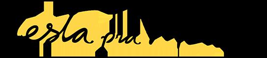 Logo Testa pra Mim